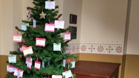 St. George's Giving Tree